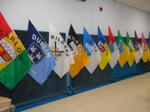 Irish County Flags_2014_584799171_n